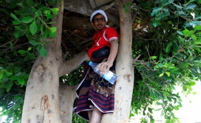 Vive en un árbol por no tener dinero