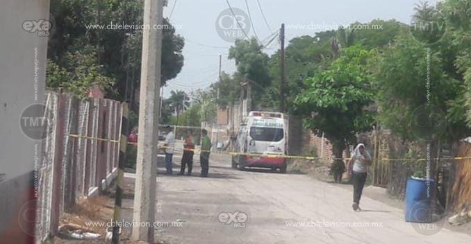 Abejas atacan a un grupo de personas en Apatzingán