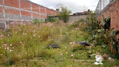 Localizan tres ejecutados al norte de Morelia