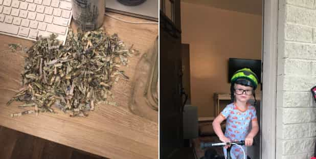 Niño destruye 20 mil pesos de sus papás en trituradora de papel