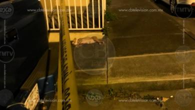 Motosicarios no respetan ni a mascotas, asesinan a un hombre y a su perro