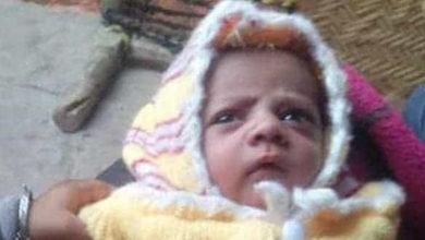 Escucharon el llanto de una madre, un mono había matado a su bebé