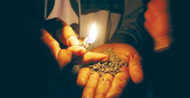Presenta el PRI su propia iniciativa para despenalizar la mariguana