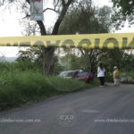 Automovilista muere por ataque de abejas en camino de Tarimbaro