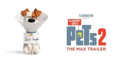 "VIDEO: Lanzan el primer tráiler de ""La vida secreta de tus mascotas 2"""