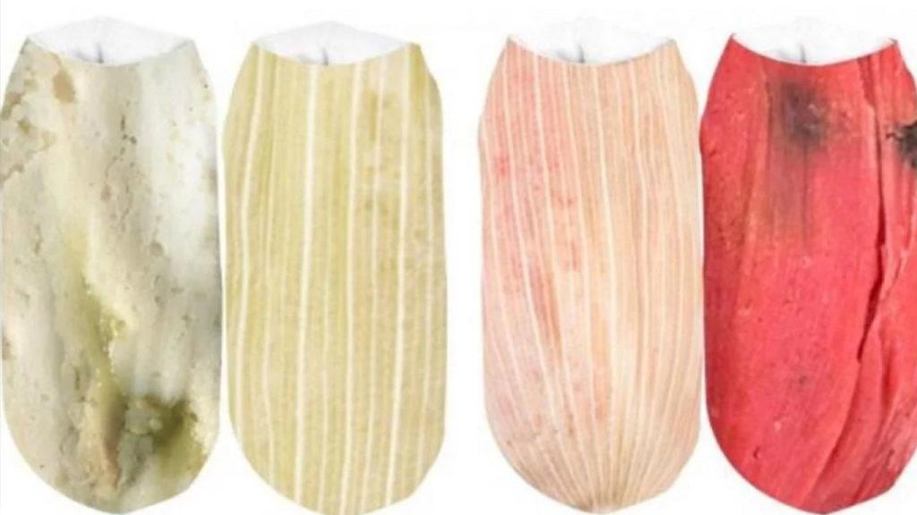 Se viralizan los calcetines en forma de tamal