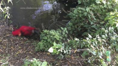 Con huellas de violencia localizan cadáver de una mujer en un canal de riego de Zamora