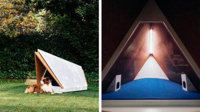 Diseñan casita para perros que los protege de los fuegos artificiales