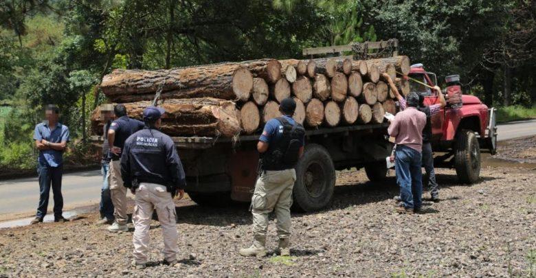 Decomisó Unidad Ambiental, mil 719 rollos de madera en el 2018