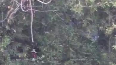 Encuentran cadáver en las aguas del Río Cupatitzio
