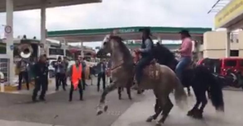 Video: Ahora en Guanajuato, con caballos bailadores y banda esperan la gasolina