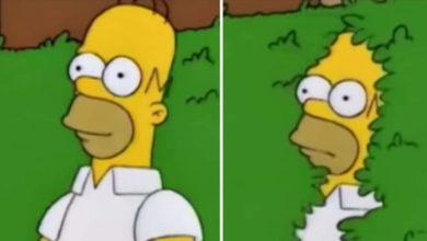 Homero Simpson envía GIF de su famoso meme y las redes estallan