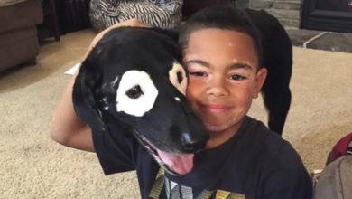 Niño sale de depresión al conocer a perro con su misma enfermedad