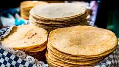 Photo of Dime cuántas tortillas consumes y te diré cuánto engordas. ¿Mito o realidad?