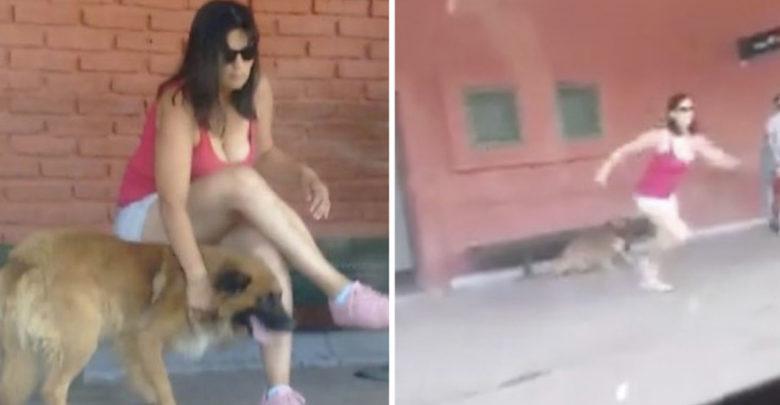 Se sube rápidamente al transporte para abandonar a su perro y la abuchean