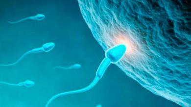 Médico usó su semen en tratamientos de fertilidad; tiene al menos 50 hijos