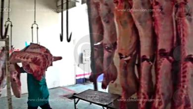 Rastro de Zitácuaro, sin avances significativos en el manejo de la carne