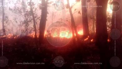 Atacan incendios forestales en la Región Uruapan