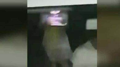 Video (+18): Niña juega con su Tablet mientras su papá muere a un lado de ella en Tabasco