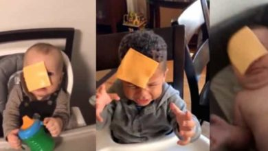 """""""Cheese challenge"""": El reto de aventar rebanadas de queso a bebés"""