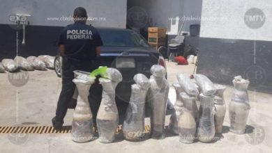 Policía Federal asegura marihuana oculta en jarrones de barro