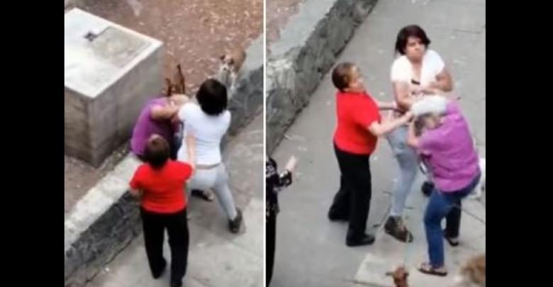 VIDEO: Joven patea a una mujer de la tercera edad y a sus perrosen CDMX