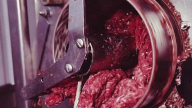 Mujer pierde la vida de una manera espantosa, cayó a una moledora de carne