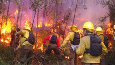 Reitera el Gobierno de México que continuará aplicando la normatividad vigente respecto a cambio de uso de suelo en terrenos incendiados