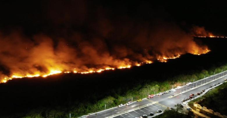 Incendio arrasa con al menos 200 hectáreas de manglar en Campeche