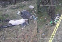 Se accidentan dos estudiantes de Paracho que viajaban a bordo de motocicleta, uno muere
