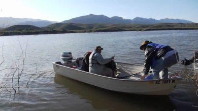 Pesca y acuacultura, fundamentales para alcanzar la seguridad alimentaria