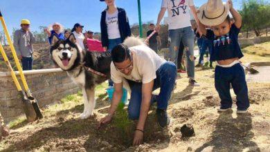 Se requiere además de plantar un árbol, que lo cuidemos: Villegas Soto