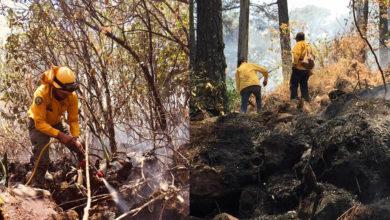 Más de 100 brigadistas trabajaron para controlar incendio en área de montaña del Parque Nacional