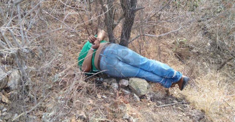 Amarrado y con tiro de gracia localizan a un hombre al sur de Morelia