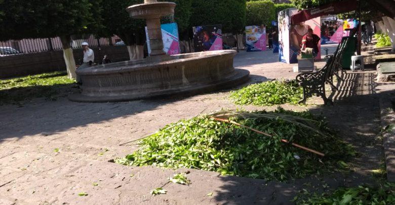 Entre montones de basura, Morelia en víspera de su aniversario