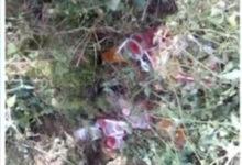 Niña salió a vender gelatinas, pero ya no regresó, fue encontrada muerta debajo de un montículo de piedras
