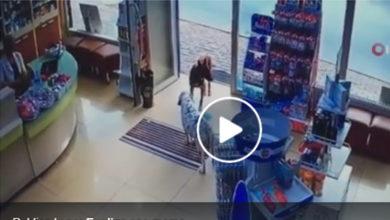 Video: Perrito con pata lesionada pide ayuda en farmacia