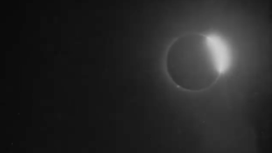 Photo of VIDEO: Publican la primera filmación de un eclipse solar ocurrido en 1900