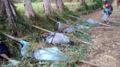 """Decenas de mujeres y niños mueren en el """"peor asesinato por venganza"""" en Papúa Nueva Guinea"""