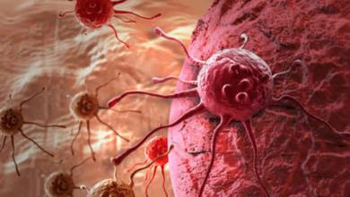 Photo of Crean virus que podría destruir todos los tipos de cáncer