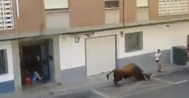 VIDEO (+18): Toro mata a hombre durante corrida en España