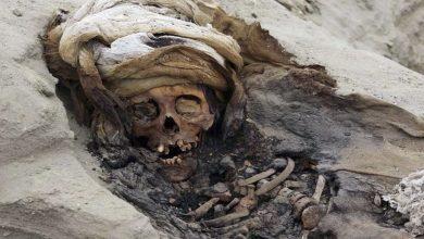 Photo of Encuentran restos óseos de 250 niños sacrificados en ceremonias precolombinas