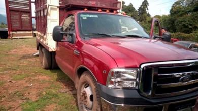 Photo of Aseguran vehículo con más de dos metros cúbicos de madera ilegal en la Reserva de la Biosfera Mariposa Monarca