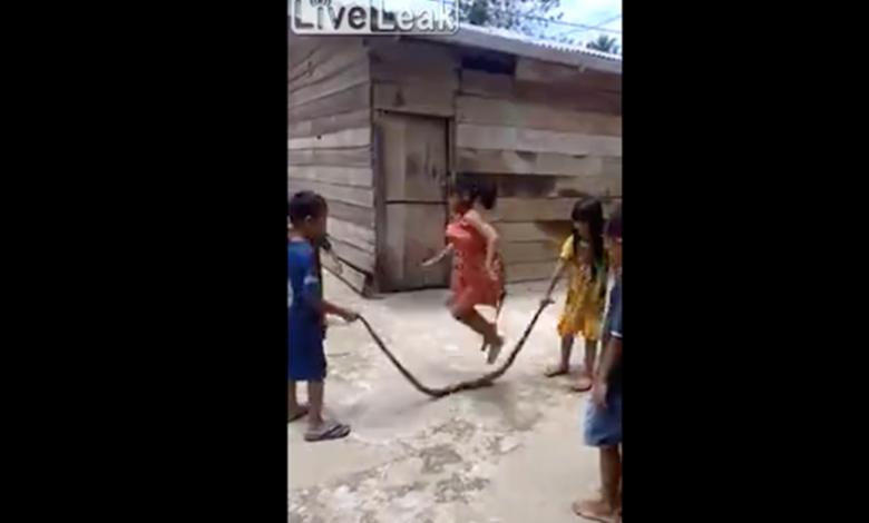 """Niños juegan a """"saltar la cuerda"""" con serpiente muerte"""