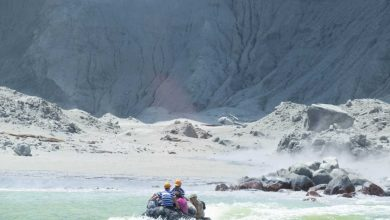 Photo of Erupción sorprende a turistas en una isla de Nueva Zelanda