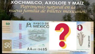 Photo of Filtran posible imagen del nuevo billete de 50 pesos