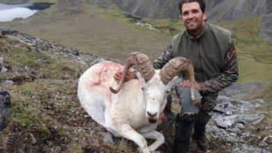 Photo of Hijo de Trump caza oveja que está en peligro de extinción