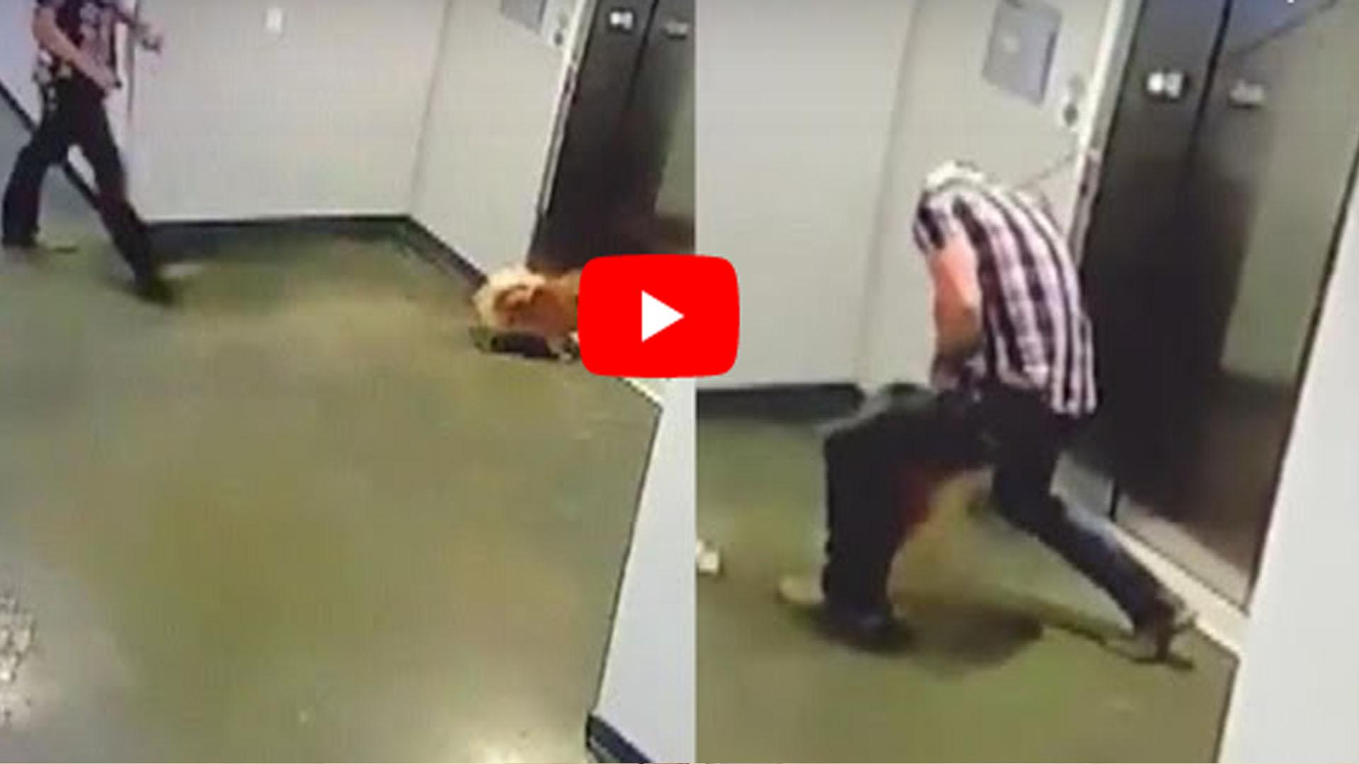 Video: Hombre salva a perrito de morir ahorcado
