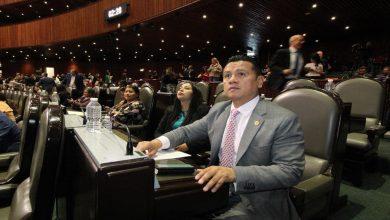 Photo of Amlo le ha cumplido a México en su primer año de gobierno: Torres Piña