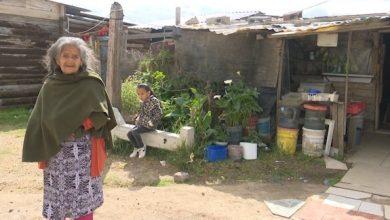 Photo of Su casa es de madera y plástico; Josefina aguanta el frío como toda una guerrera